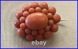 Antique 18K Yellow Gold and Natural Coral Pin Very Nice Color
